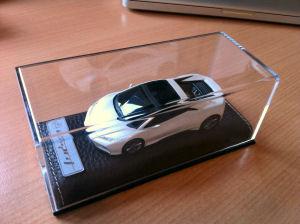 http://www.lotusdriversguide.com/Modelcars/Images6/Esprit%20concept%202010%201-43%20BBR%20white.JPG